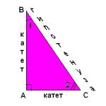 Геометрия прямоугольного треугольника.